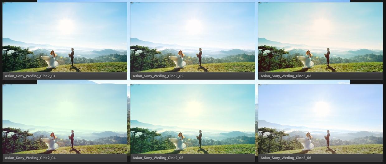 ASIAN BAMBOO WEDDING LUT PACK Vol.1