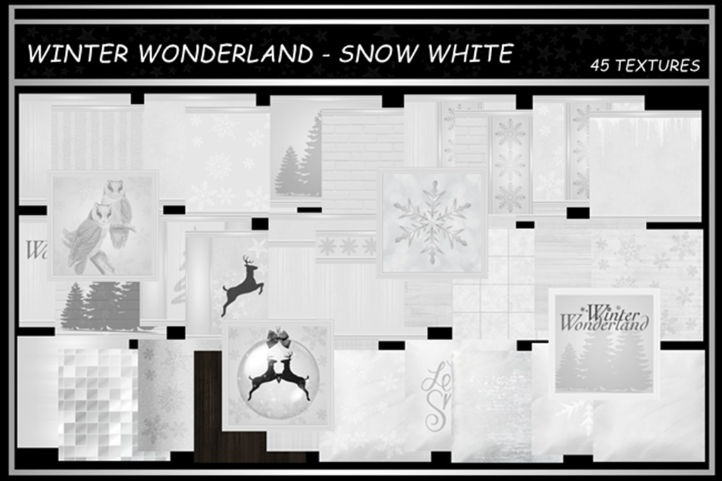WINTER WONDERLAND ~ SNOW WHITE