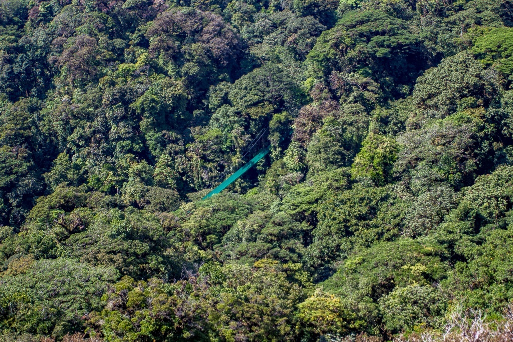 Monteverde HD