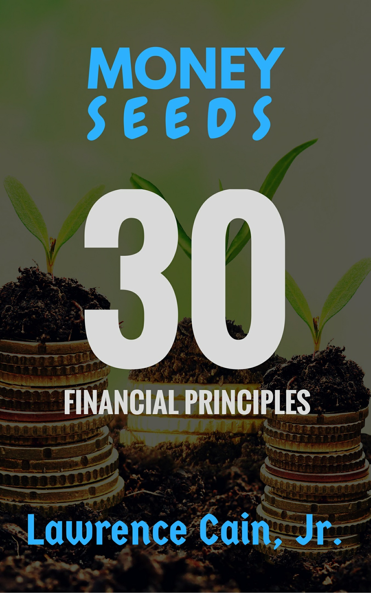 Money Seeds Audiobook
