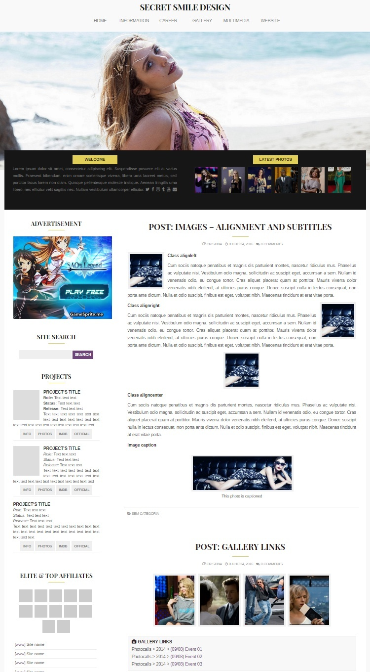 WordPress Theme #01 (Responsive)