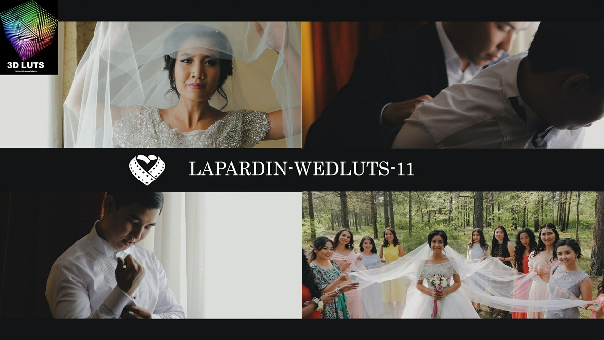 LAPARDIN WEDLUTS - Romantic Wedding LUTs for AE, PS, Premire, Resolve and FCP X and etc... (Win/Mac)