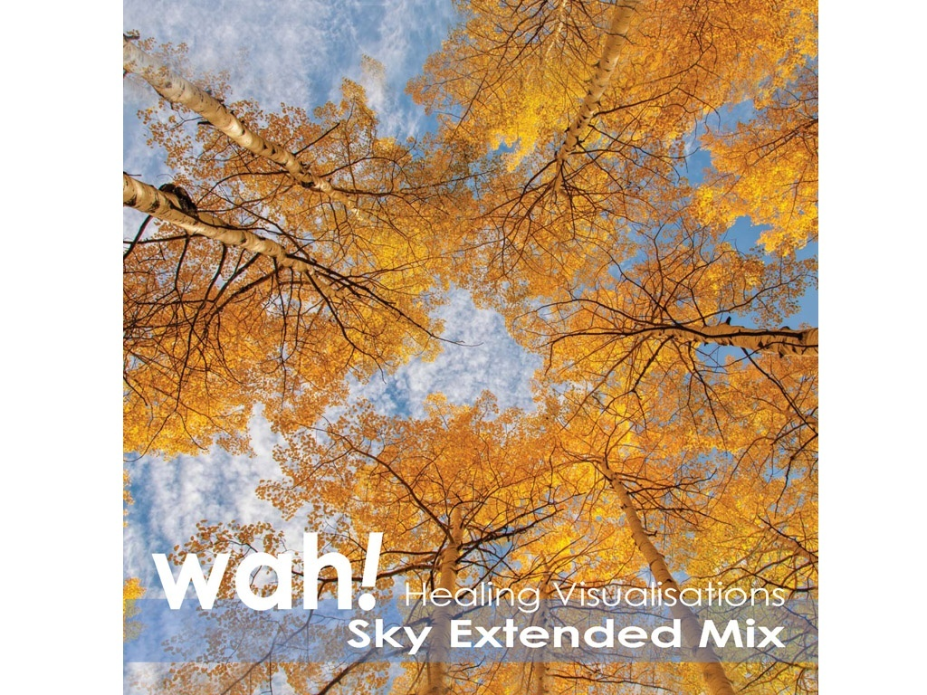 Healing Visualisations (Sky Extended Mix)