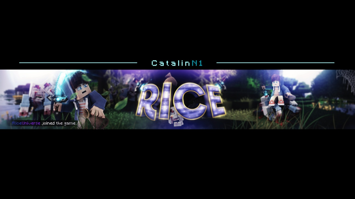 Rice Banner - Photoshop Project