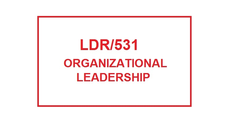 ldr 531 example of laedership style Ldr 531 week 3 individual assignment leadership style paper  selected  leader to identify characteristics and provide specific examples of leadership qu.