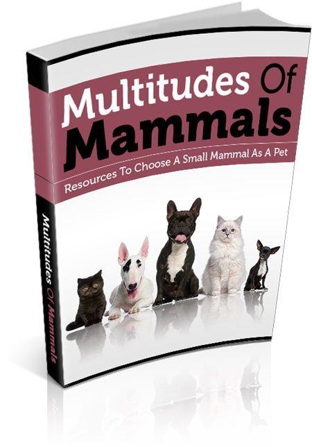 Multitude of Mammals