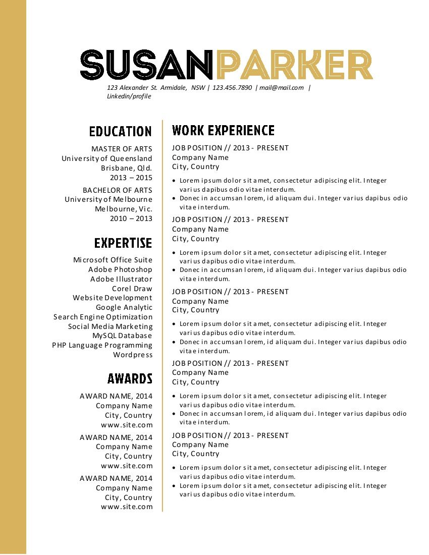 professional resume templates pure resume - Buy Resume Templates