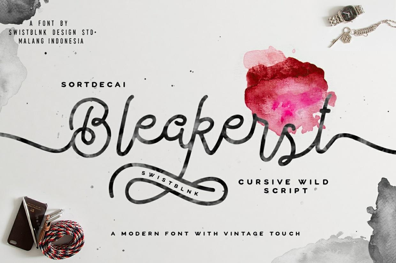 Bleakerst Script ( Anniv Free Sale )
