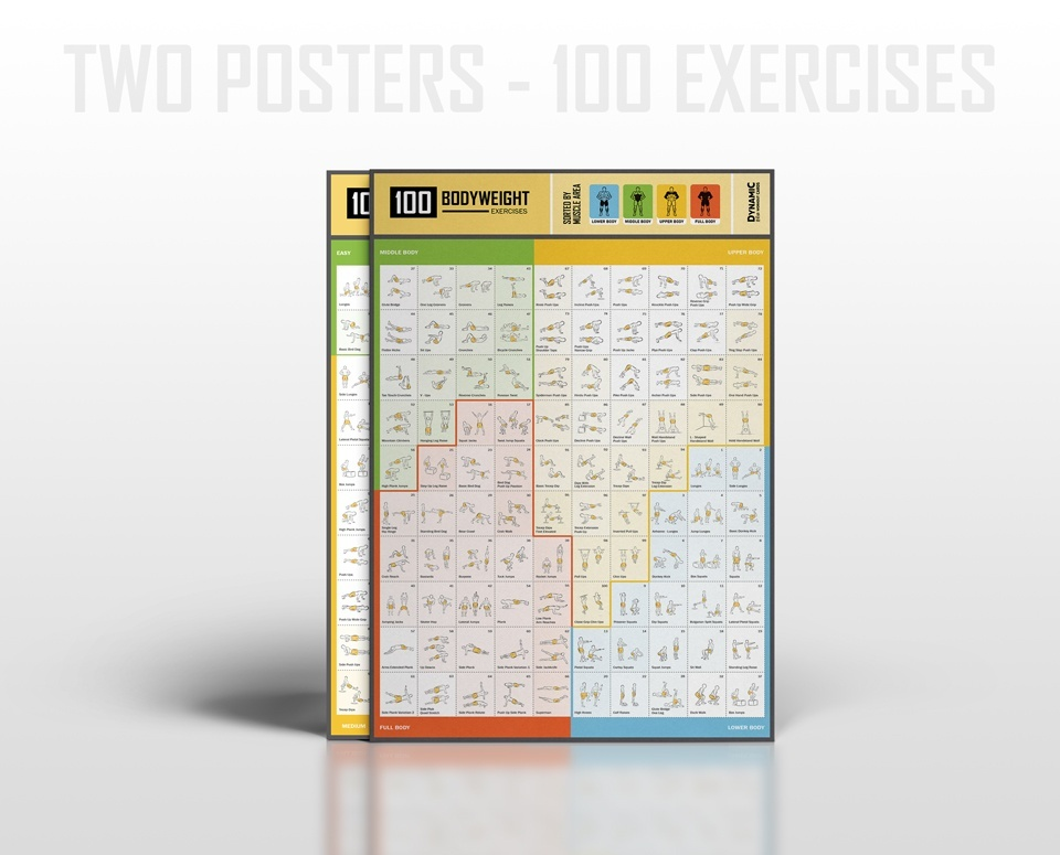 100 Bodyweight Cards / Posters by level and muscle area - PDF