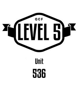 UNIT 536 Understand sensory loss