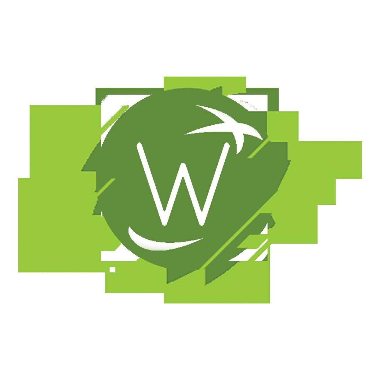 Wondrous Women | Wednesday 19.7.17 | Charlotte Curran