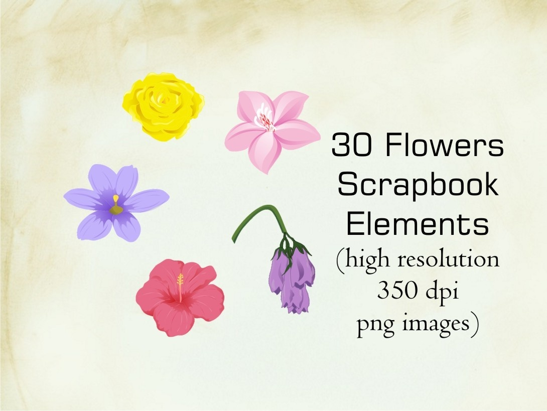 30 Flowers Scrapbook Elements (high resolution PNG images)