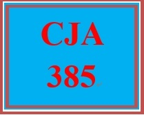 CJA 385 Week 2 Policy Development and Implementation Executive Summary
