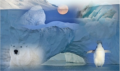 A Polar Ice Story - Multi-sensory guided journey, Booklet & MP3