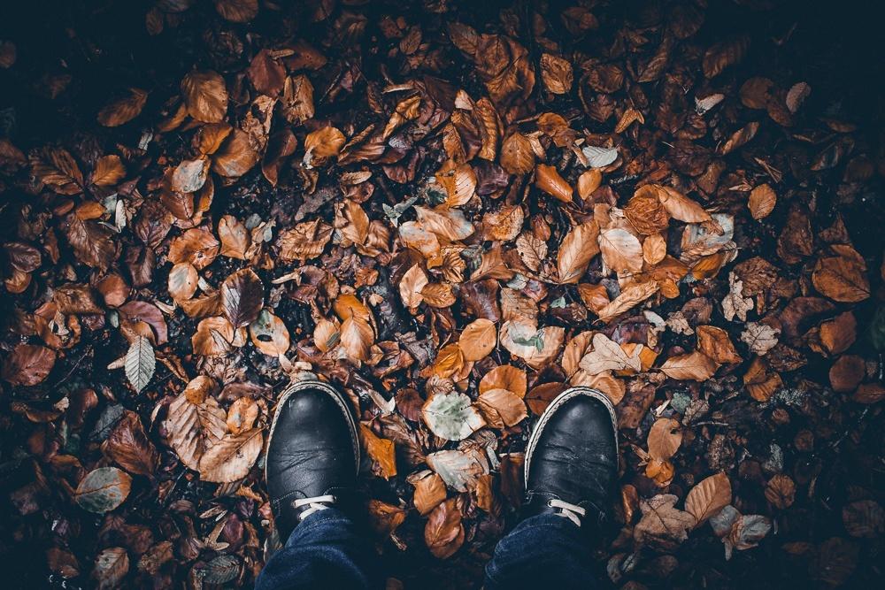 Autumn Presets