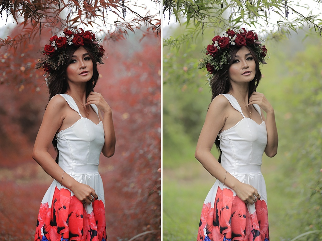 Amazing Lut Effect for your Photos & Videos