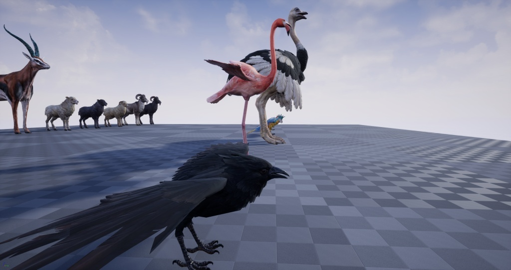 Realistic Mammals & Birds Animated UE4 Pack