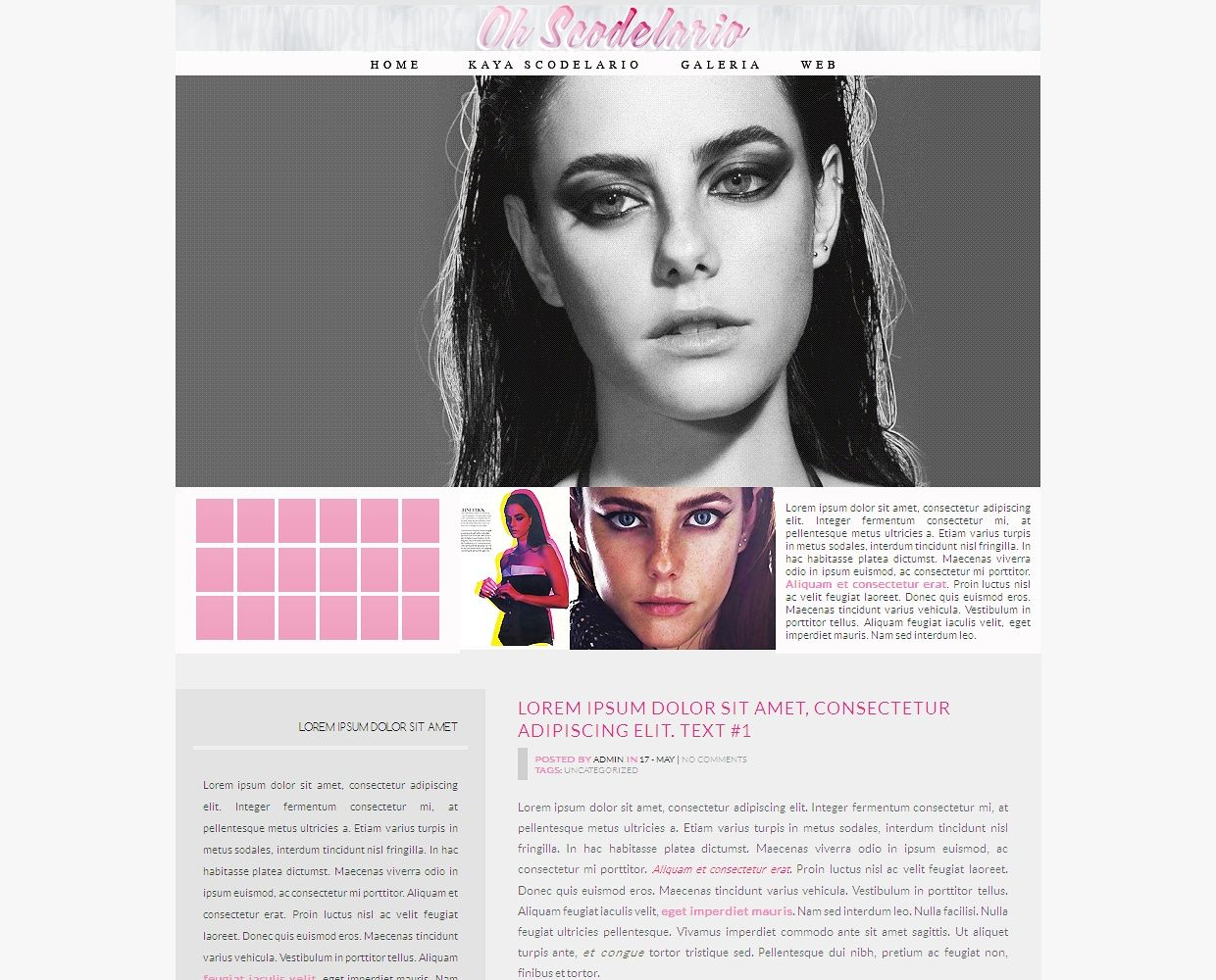 Wordpress premade #2