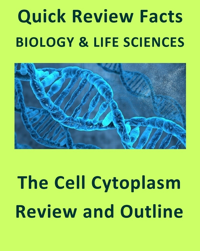 The Cell Cytoplasm - Quick Review Notes and Outline