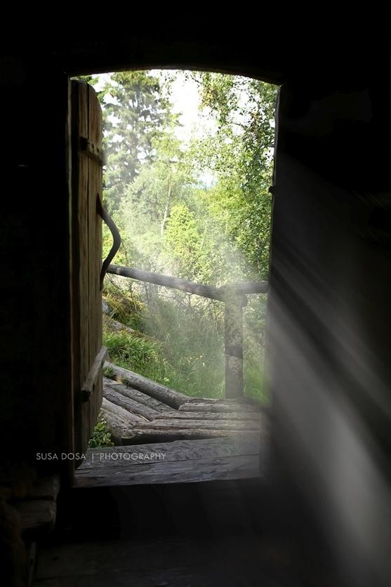 - Cabin -