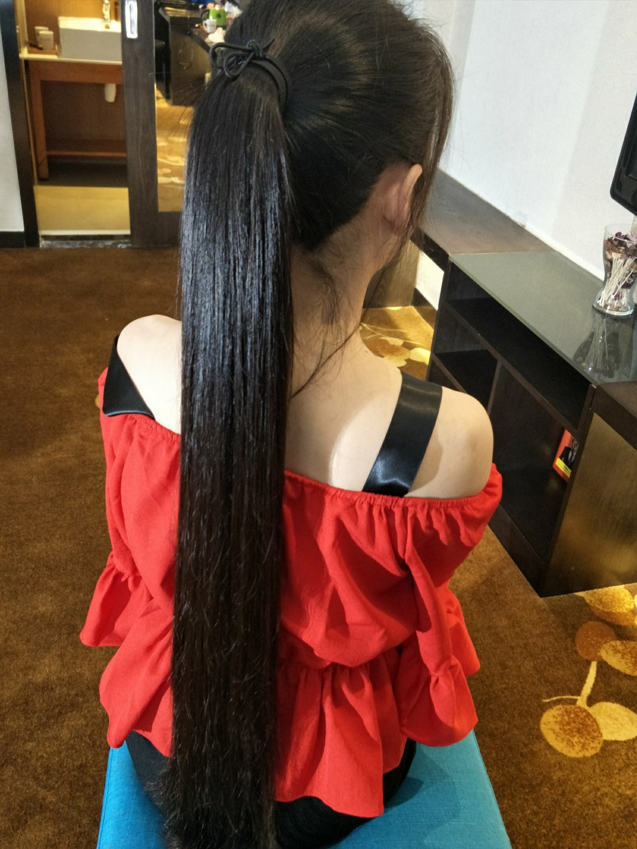 Oriental longhair show