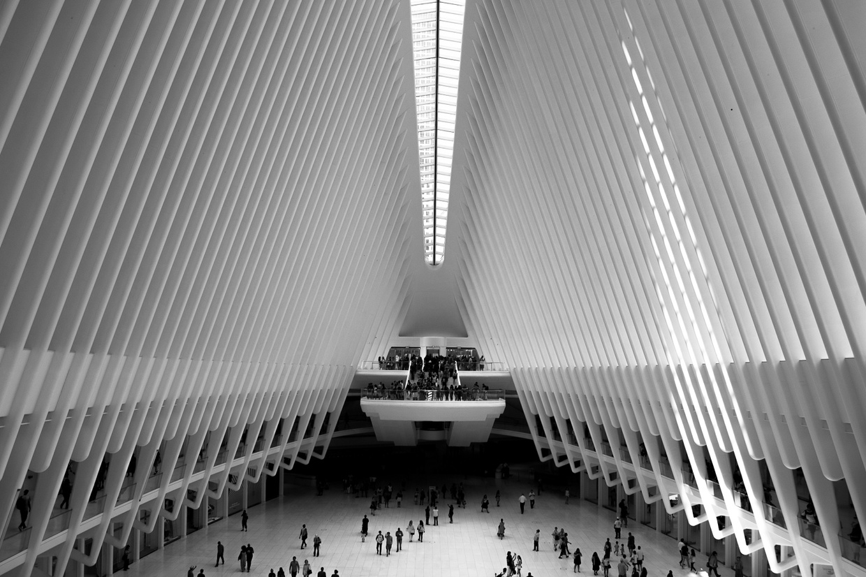 New York Stories 6 - Oculus landscape