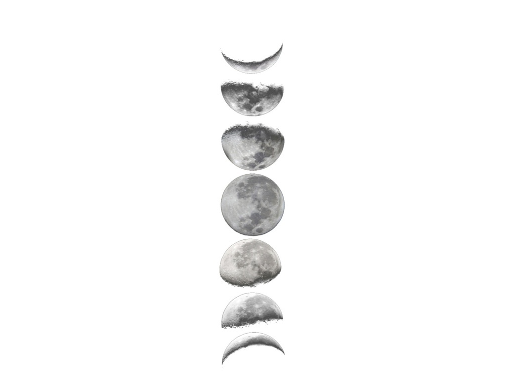 The Moon Phase