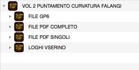 VOL 2 - PUNTO E CURVATURA DELLE FALANGI