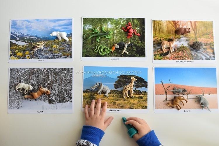 Animal Habitats (Sorting Cards)
