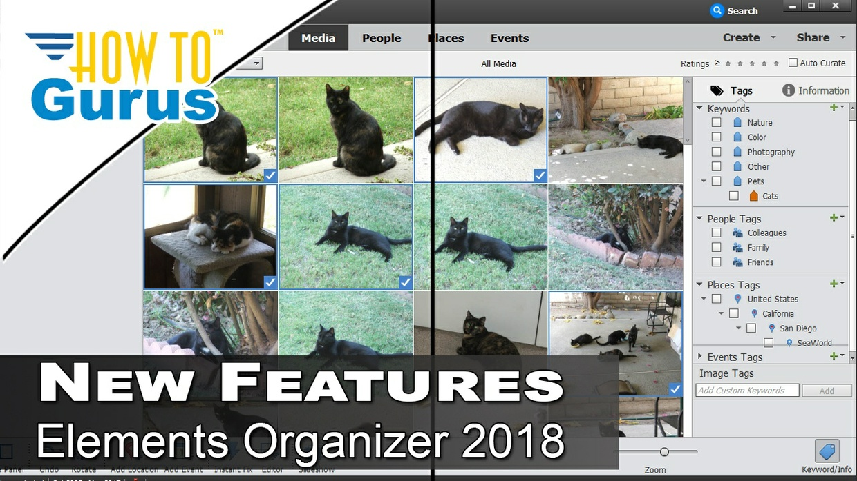 Review of the Photoshop Elements Organizer 2018 New Features and Tools