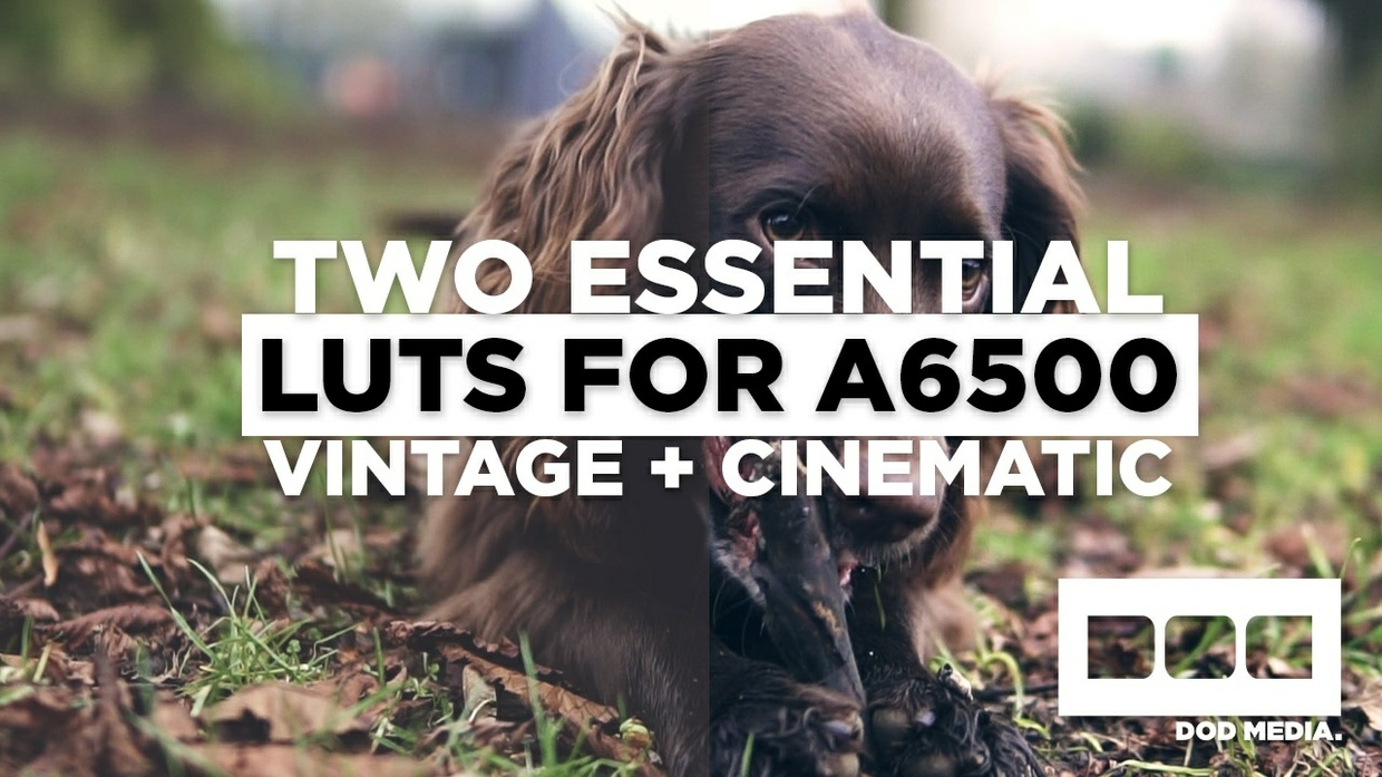 Two Essential Cine LUTs (a6300/a6500/a7Sii)