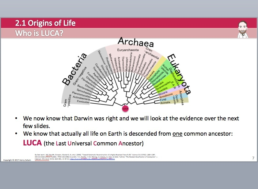 Cambridge Pre-U Biology - 2.1 Origins of Life