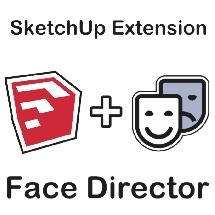 Face Director - Fix Reversed Faces