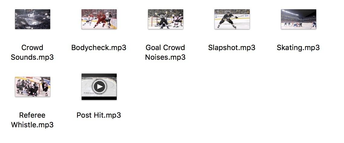 Custom Hockey Sound Effects: MP3