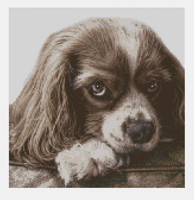 Cross Stitch PDF Dog