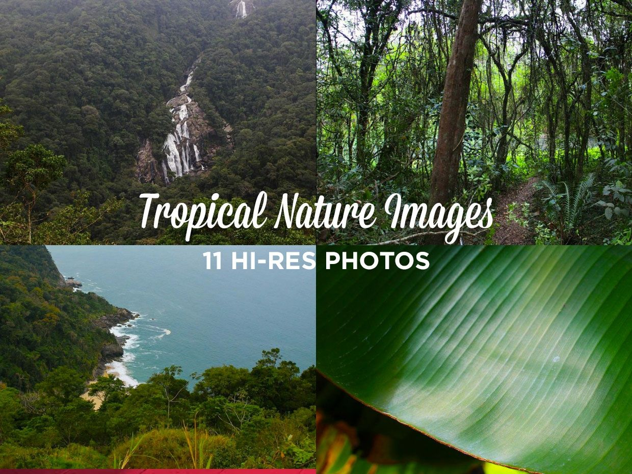 11 HD TROPICAL NATURE IMAGES