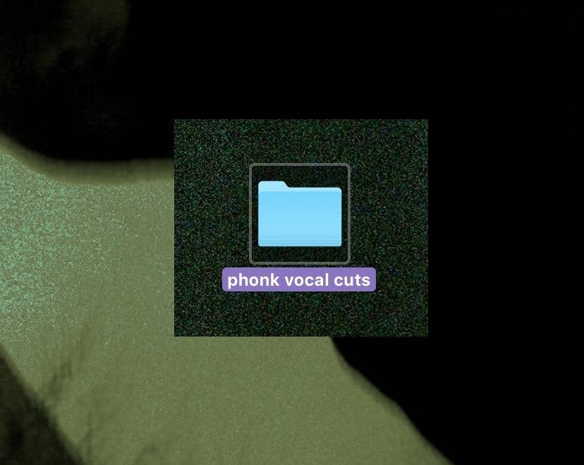 RAP VOCAL LOOPS / PHONK SAMPLE PACK