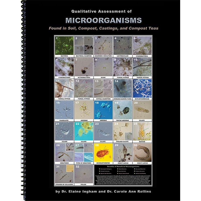 The Microbe Manual: Qualitative Assessment of Soil Biology
