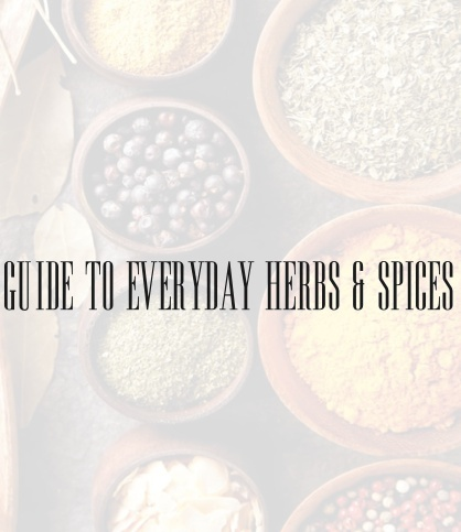 Guide To Everyday Herbs and Spices