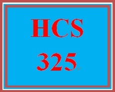 HCS 325 Week 4 Week Four Organizational Structure Outline Worksheet
