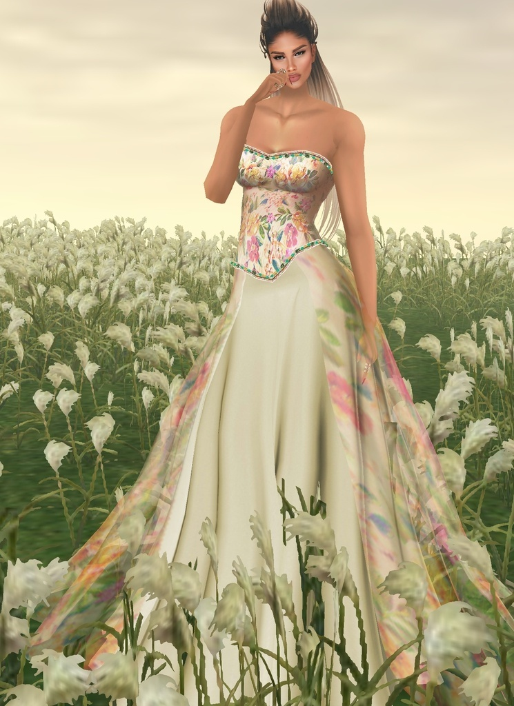 2 Gowns Spring Gift