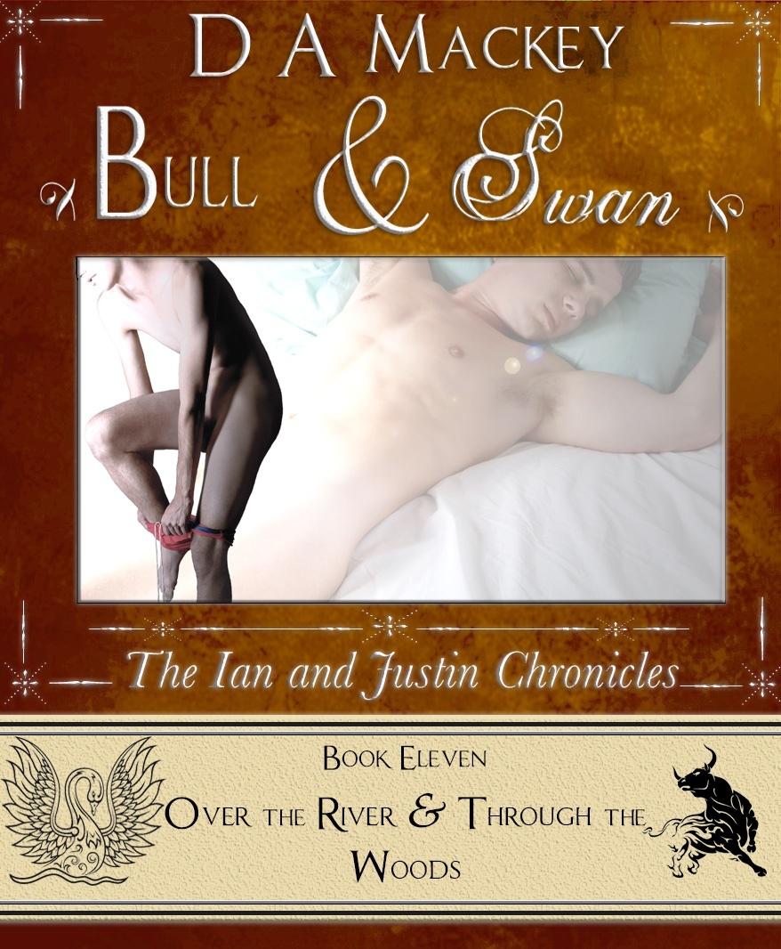 PDF Bull & Swan (Book 11)