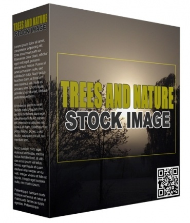 Trees and Nature Stock Images