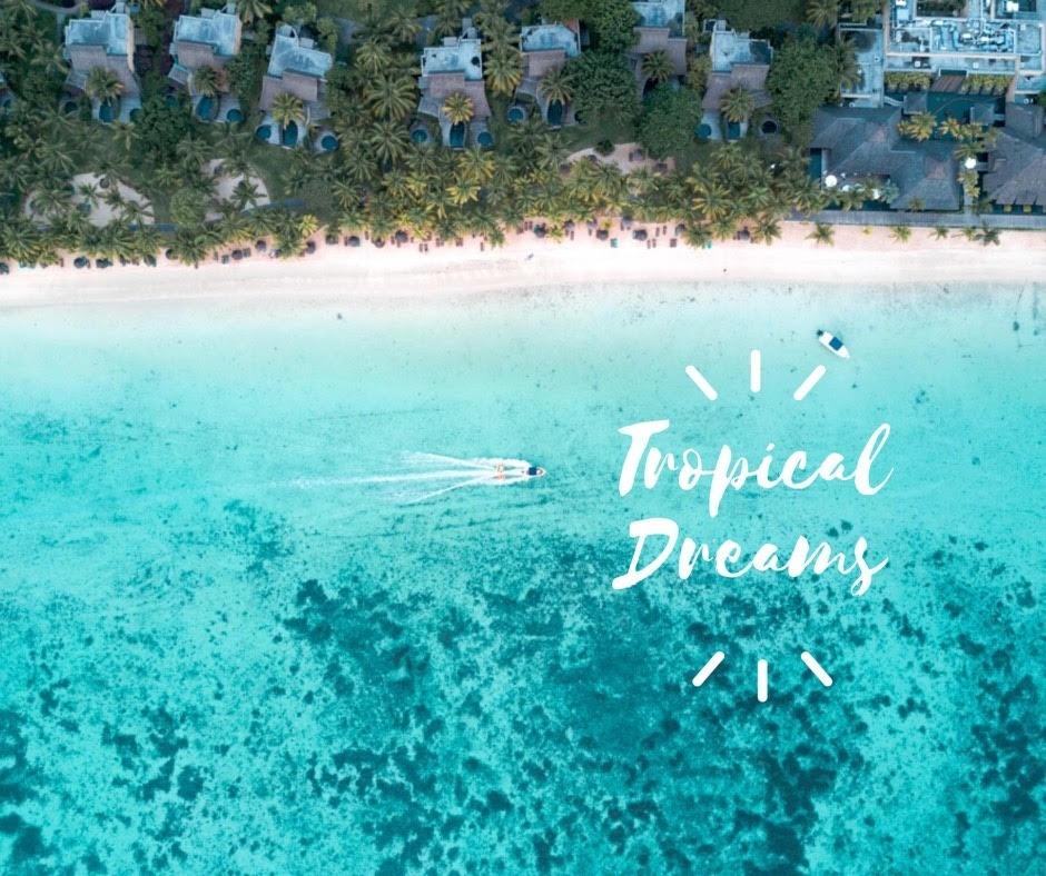 Tropical Dreams Lightroom Preset Pack