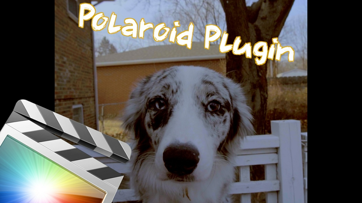 Justin Escalona Polaroid Nolstagia Plugin - Final Cut Pro X