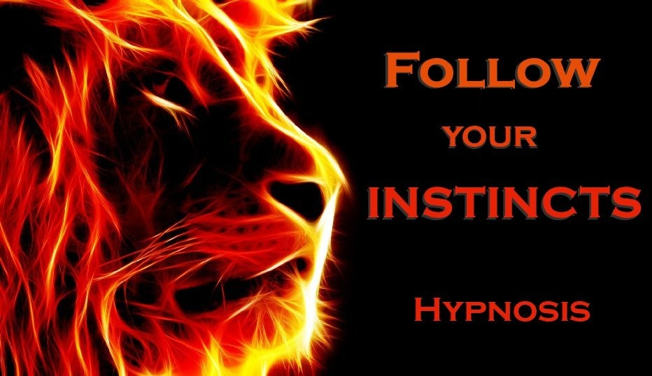 INSTINCTS Meditation - How to Follow your Instincts