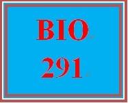 BIO 291 All participations