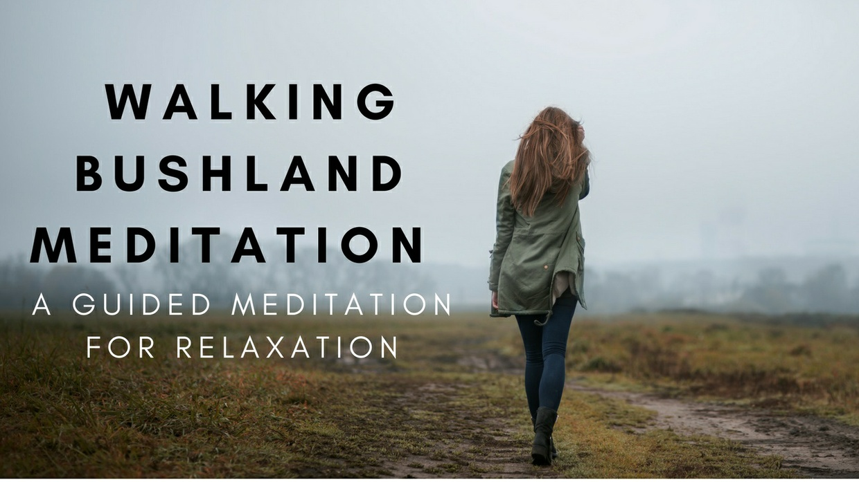 Virtual Walking Bushland meditation A guided meditation for relaxation