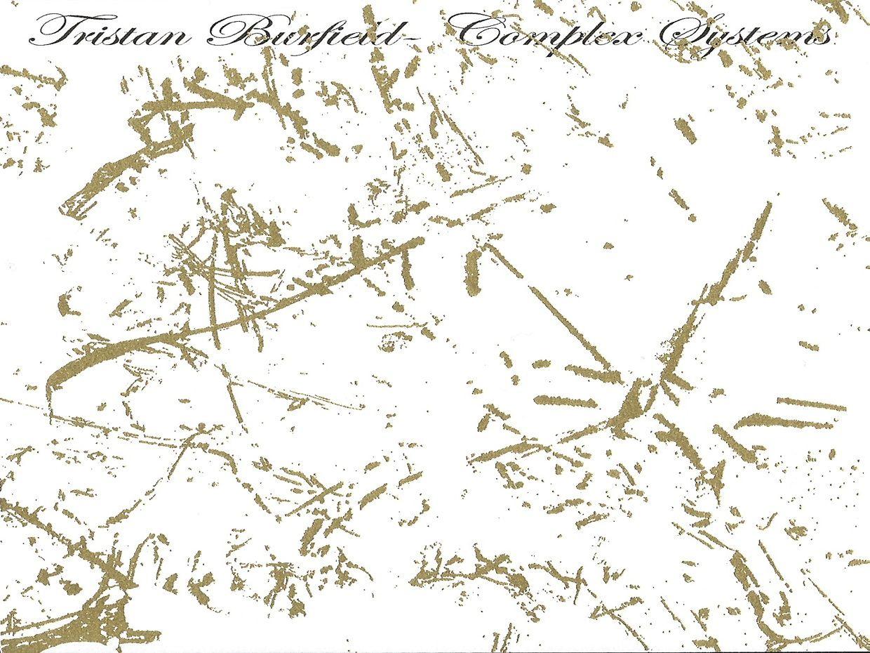 Tristan Burfield-Complex Systems LP