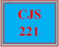 CJS 221 Week 5 Cultural Competence Paper
